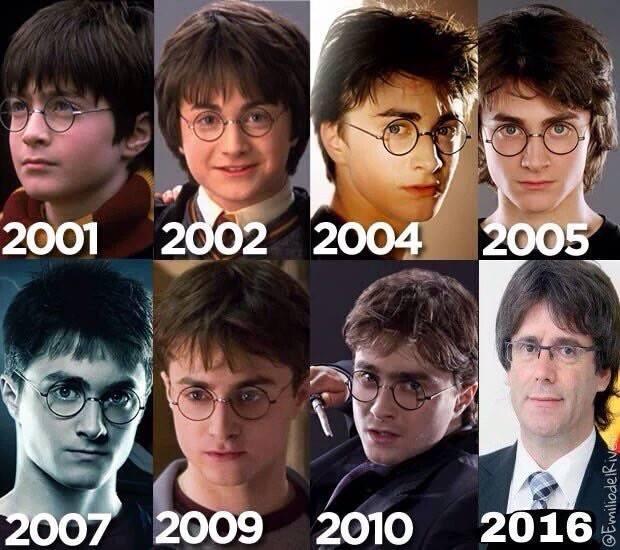 Harry Potterdemont